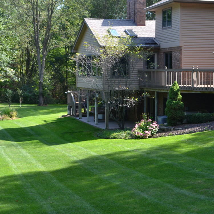 Our team has what it takes to keep your property looking its best!